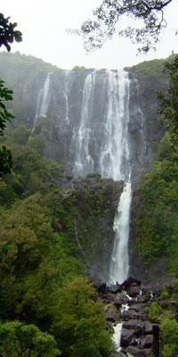 Wairere Falls, Waikato, New Zealand